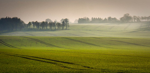 field sunrise landscape spring flickr olympus april omd lightroom hants m43 mft 1250mm em5 500px lr4 microfourthirds mzuiko