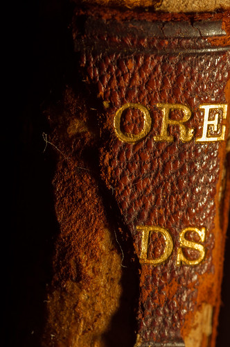 old light macro leather book nikon warm 28 tamron 90mm decayed d90 strobist