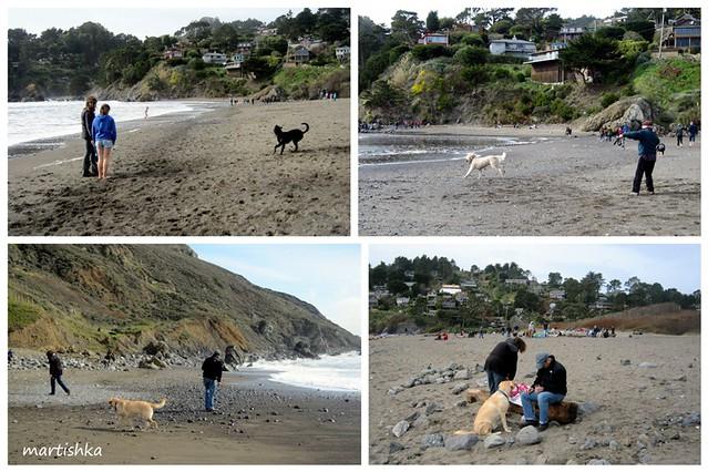 Muir Beach 2011