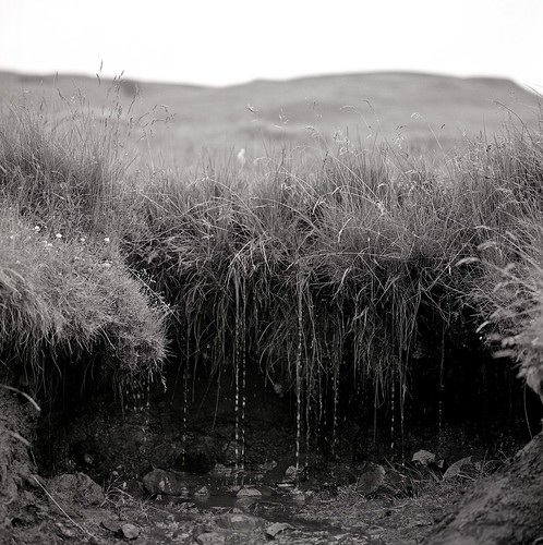"Image titled ""Dripping, Skógar, Iceland."""