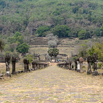 04 Viajefilos en Laos, Champasak  03