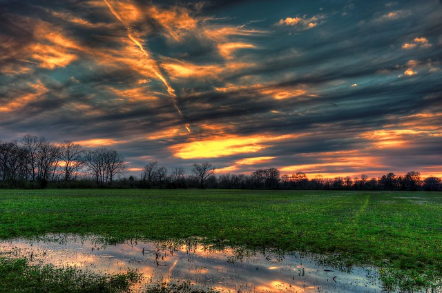 Puddle at Sunset