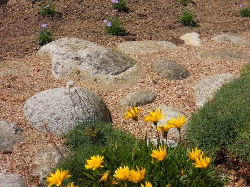 Jardín de plantas y piedra decorativa 7