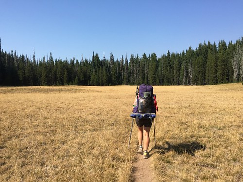 PCT: Day 132
