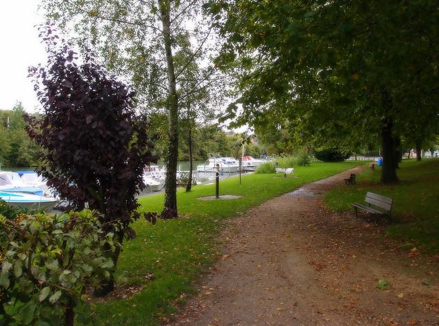 Le petit chemin du bord de Marne