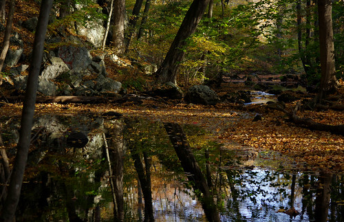 pentax k3 vbd smcpentaxda55300mmf458ed ct connecticut fall fallcolor autumn newengland leaves reflection trumbull 2015 fall2015 river pequonnockriver oldminepark leaf landscape vista woods trees forest foliage