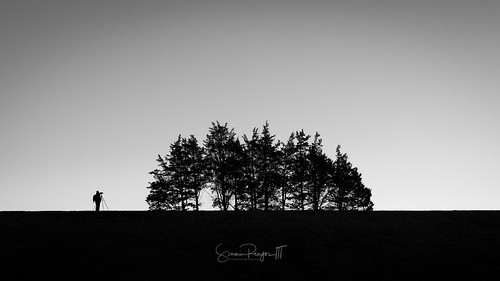 2017 blackwhite connecticutphotographer january landscape landscapephotography nature naturephotography outdoors seascape sunrise trees unitedstates winter barkhamsted barkhamstedreservoir digital reservoir silhouette connecticut us