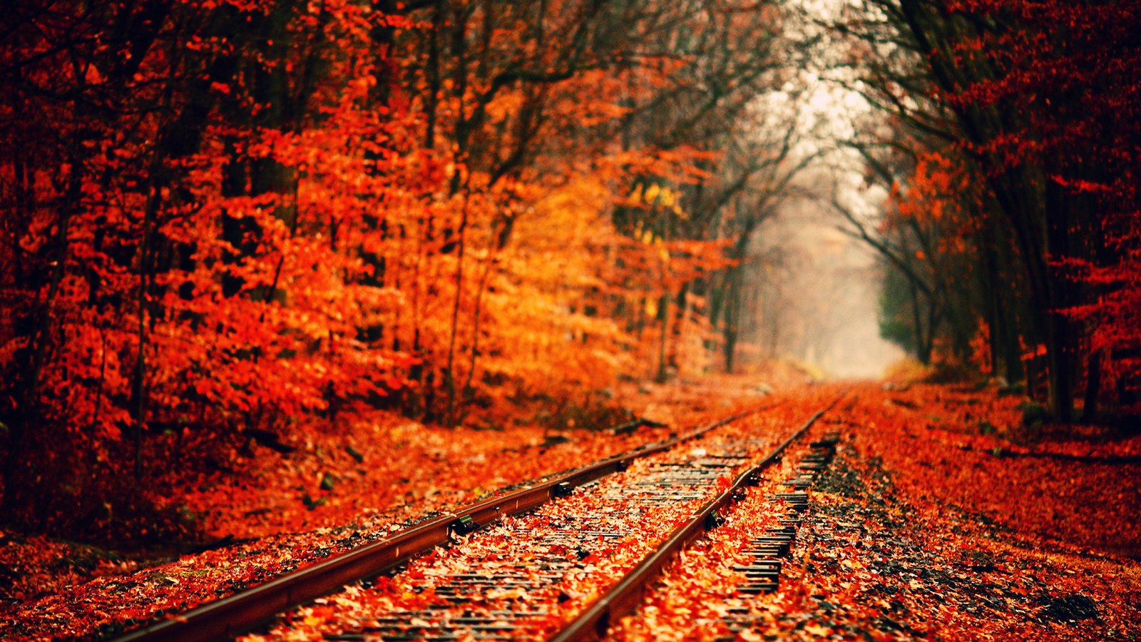 Fall Desktop Wallpaper Backgrounds