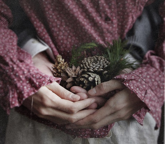 pine cones and other loves | 2013