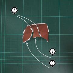 วิธีทำโมเดลกระดาษตุ้กตา คุกกี้สาวผู้ร่าเริง จากเกมส์คุกกี้รัน (LINE Cookie Run – Bright Cookie Papercraft Model) 003
