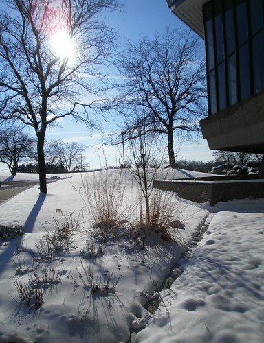 Campus Winter Wonderland