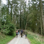 Continuous Cover Forestry walkabout