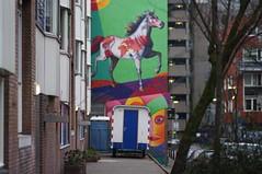 Zwarte Paardenstraat, Rotterdam