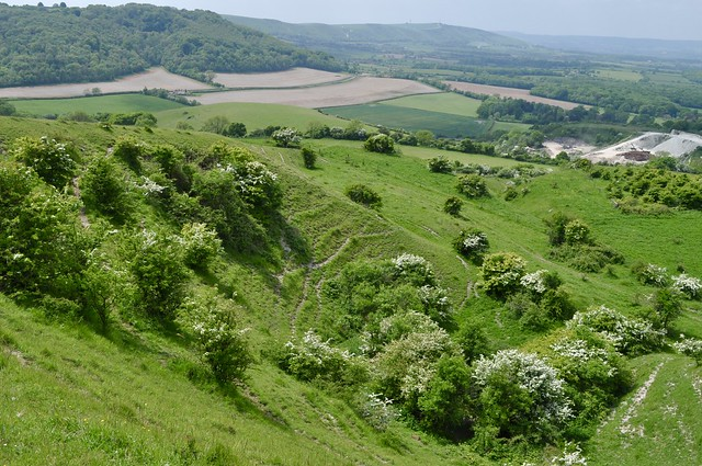Wolstonbury Hill