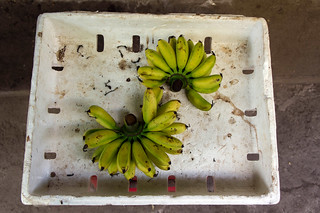 bananas | by kuuan