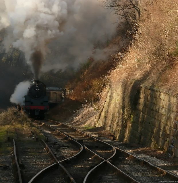 75029 approaching Goathland after the long uphill slog from Darnholm