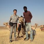 Camel Safari, India