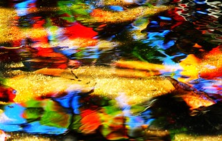 Water artistry: Colourful leaves in water   by Peggy2012CREATIVELENZ