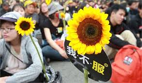 圖07太陽花運動成果就在於嚴重地傷害了馬政府的威信