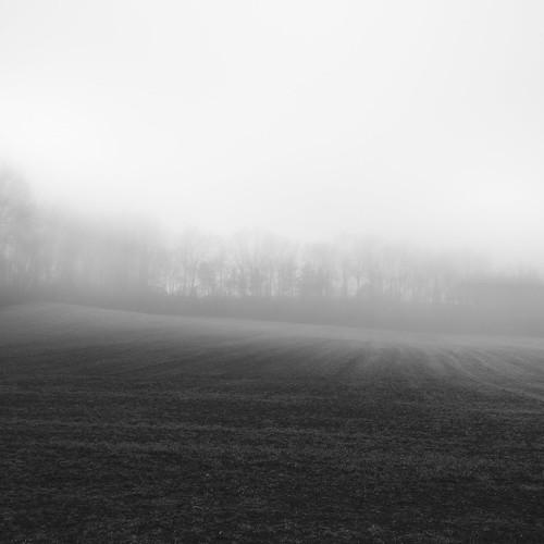 holidayseason newjersey unitedstates winter northamerica creamridge landscape monmouthcounty fog farm upperfreeholdtownship