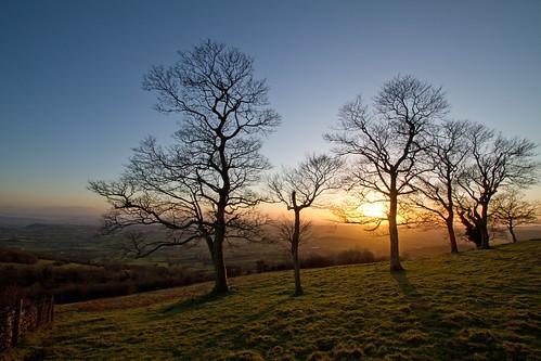 uk trees winter light sunset england sky sun sunlight landscape evening shadows sundown unitedkingdom britain silhouettes somerset hills gettyimages priddy mendip wookeyhole somersetlevels deerleap