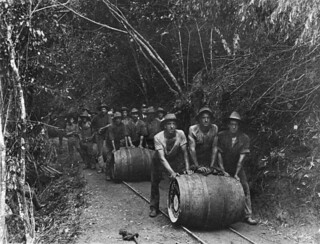 Railway workers pushing barrels of beer along the Cairns to Kuranda railway line, 1911 | by State Library of Queensland, Australia