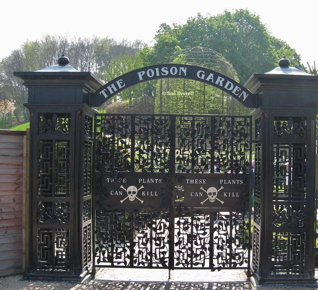 Poison Garden Gates Alnwick Garden Sue Everett Flickr