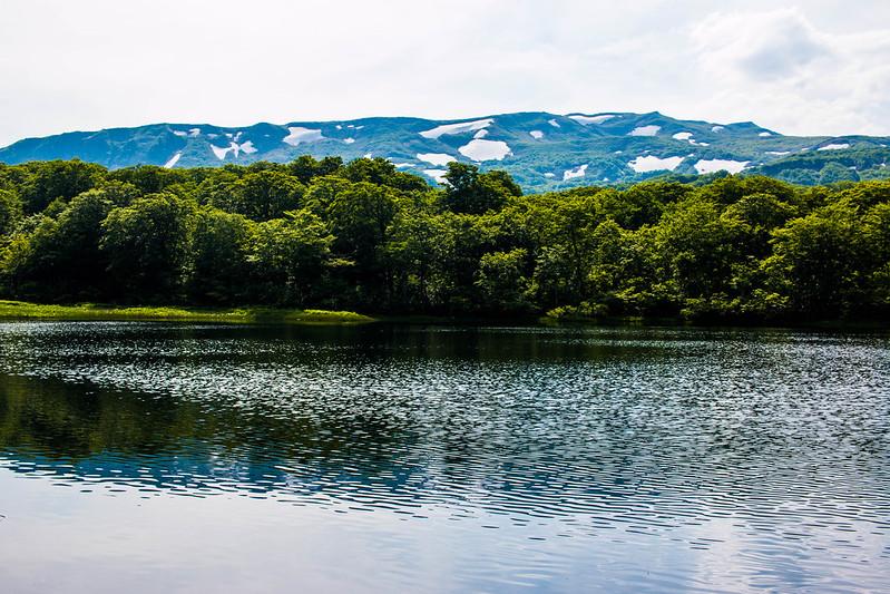 20160611-焼石岳-0837.jpg