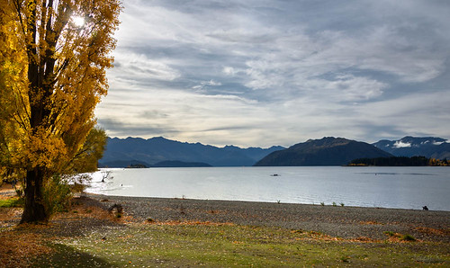 autumn trees newzealand sky people mountains water leaves clouds boat view stones scene autumncolours southisland centralotago wanaka lakewanaka tripdownsouth wanakasfamoustree