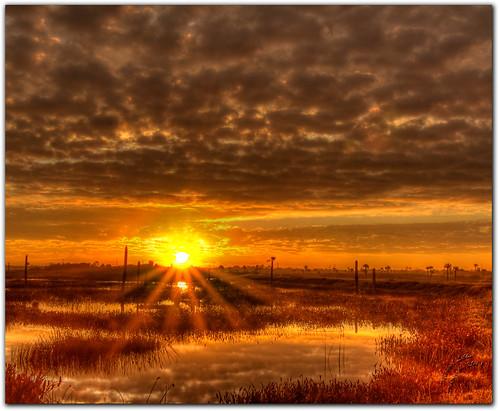 nature sunrise florida viera brevardcounty vierawetlands mygearandme