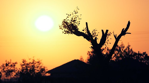 sunset sun pen landscape maharashtra backlighted sigma70300mm incredibleindia canonrebelt1i