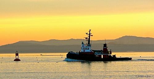 ocean sunset mountains vancouverisland tugboat fraserriver steveston buoy garrypointpark