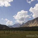 Belly River Ranger Station fenceline looking towards Cosley Ridge