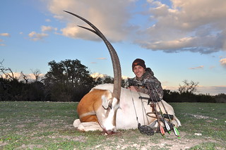 Gold Medal Scimitar Oryx | by Hunting Texas Trophies | VBHARRE Ranch
