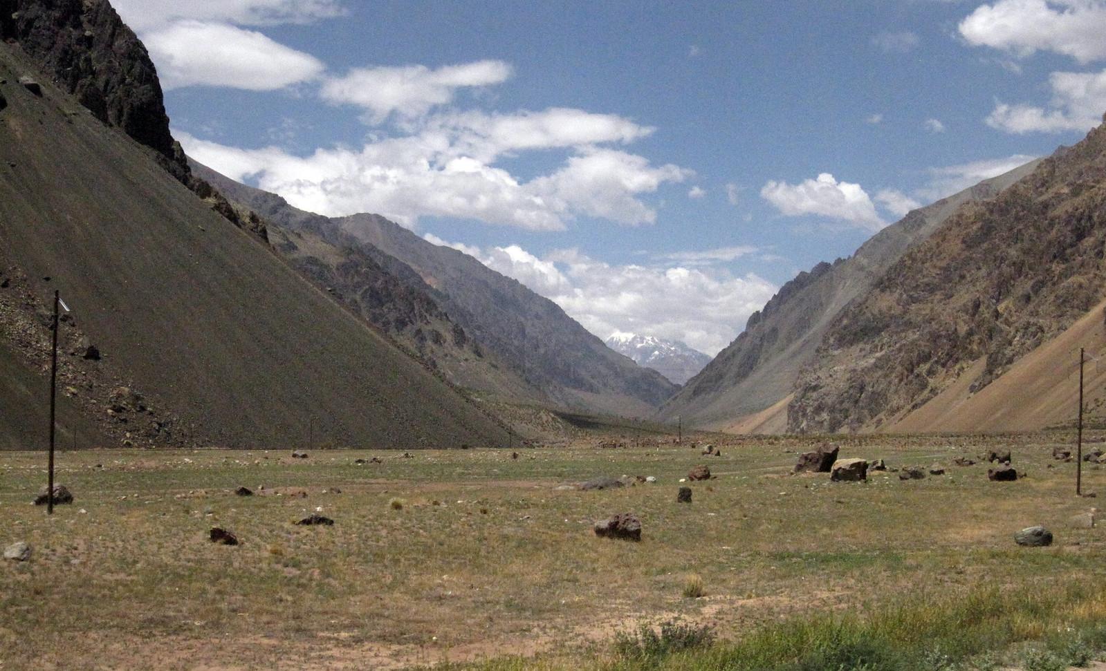 Mendoza 344