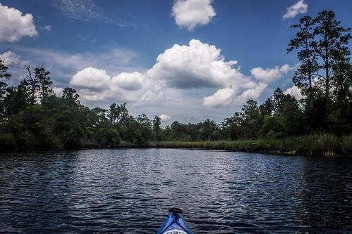 us unitedstates southcarolina kayaking paddling newriver pritchard hardeeville
