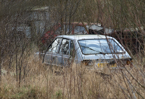 FSO Polonez and others | by Spottedlaurel