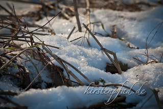 Winter in Stappenbach 2012 | by Blueturtles_