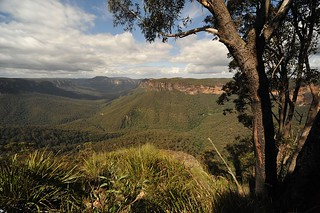 Grand Canyon to Evans Lookout, Blackheath | by JC Merriman