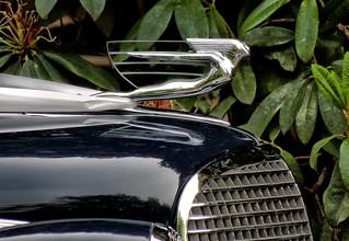 Classic Auto 1937 Cadillac hood ornament - Melbourne AU 04Nov2012 sRGB web