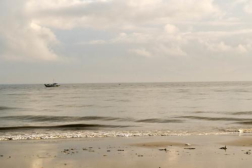 Biển Đông - East Sea, Việt Nam