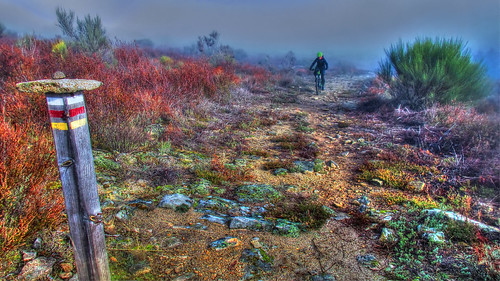IMG_7870_ (2)_ (3)_tonemapped | by M.a.r.t.e.r.
