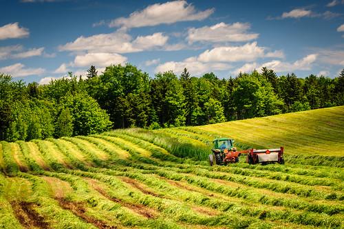 tractor canada field clouds novascotia farmer hay colchestercounty greenoaks