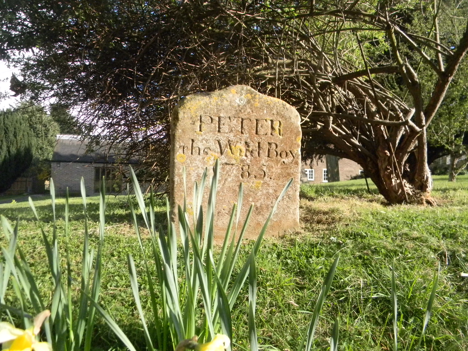 Peter the Wild Boy's grave, Northchurch St Mary's Northchurch. Not on the walk - I tried heading south to Northchurch. (An experiment I'm in no hurry to repeat.)