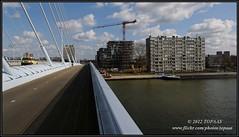 2012-03-19 Utrecht - De Nieuwe Wereld - 1