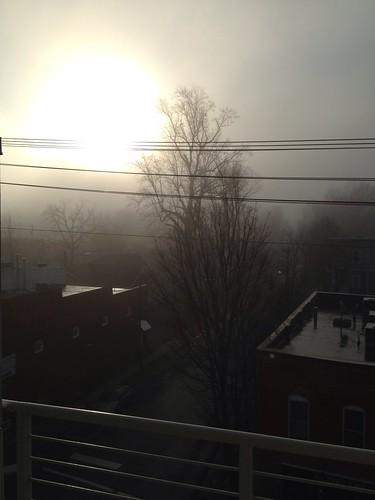 morning light sun fog nc charlotte bloom 365 noda iphone 366 project365 project366 iphone4s