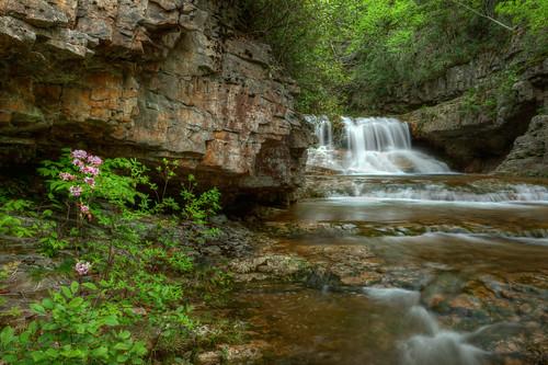 longexposure landscape outdoors virginia waterfall rocks stream unitedstates hiking wideangle backpacking azalea wilderness hdr springtime stmarys jeffhammond sonya580 eevy24012