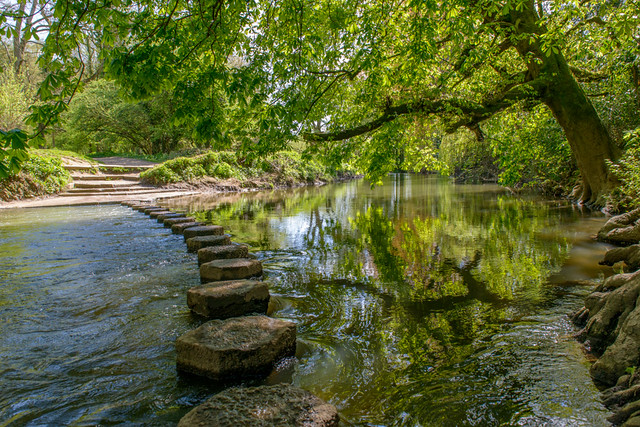 Stepping Stones at Box Hill