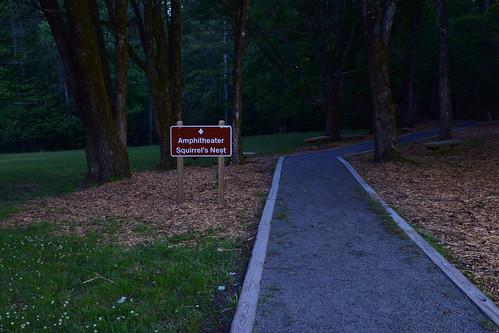 georgia woods path unicoi