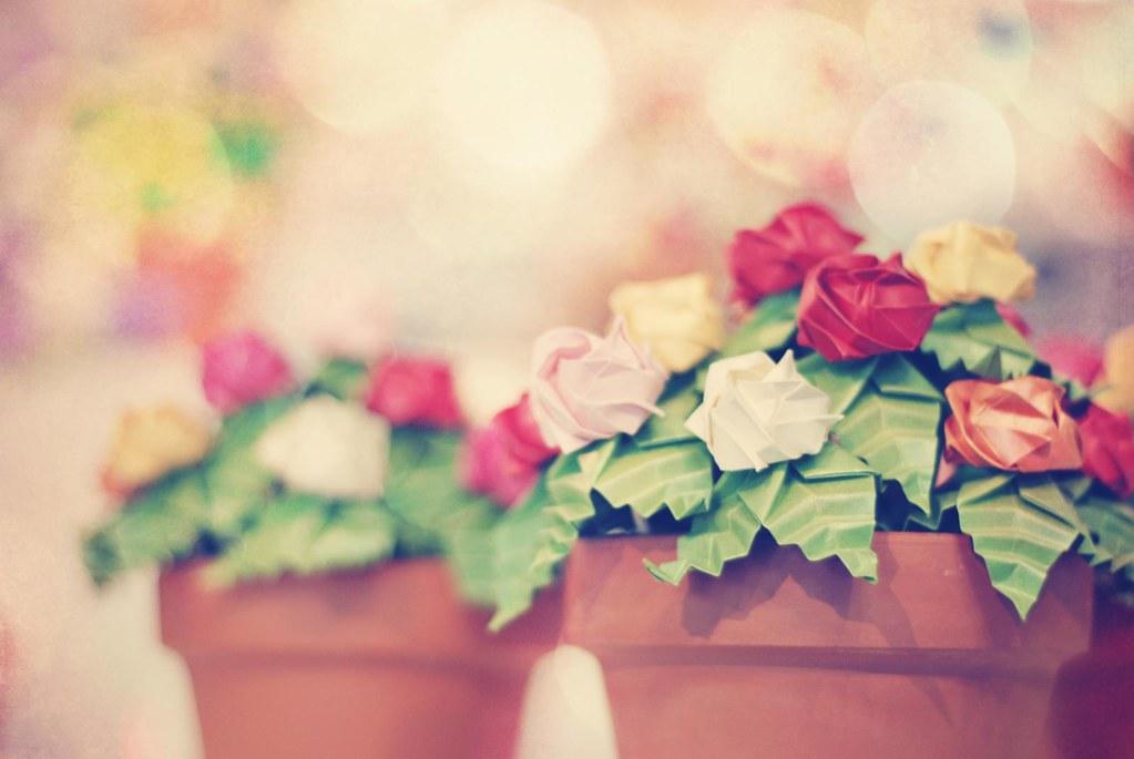 Pequeñas Rosas de Papel